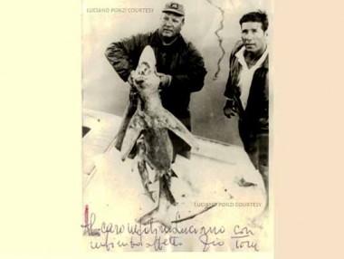 Tom immortalato dopo alla cattura di uno squalo nell'adriatico - dedica al nipote Luciano Ponzi